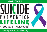 Suicide by the Numbers